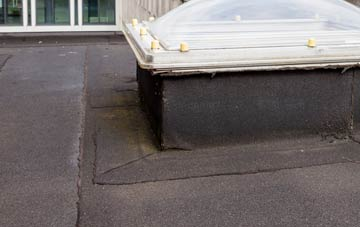 disadvantages of Tanis flat roofs