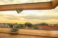 rated Tanis roof window companies